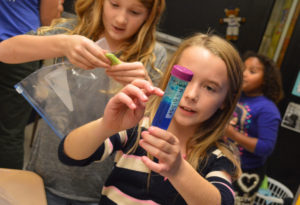 Students conduct science experiments