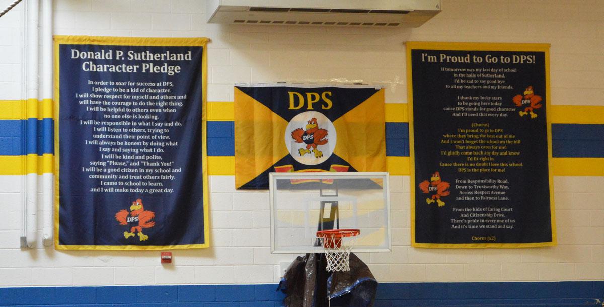 2016-17 DPS flag