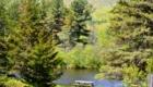 Photo of pond at wildlife refuge