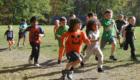Pumpkin Race