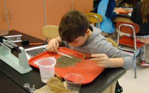 Goff student digs through fossil sediment