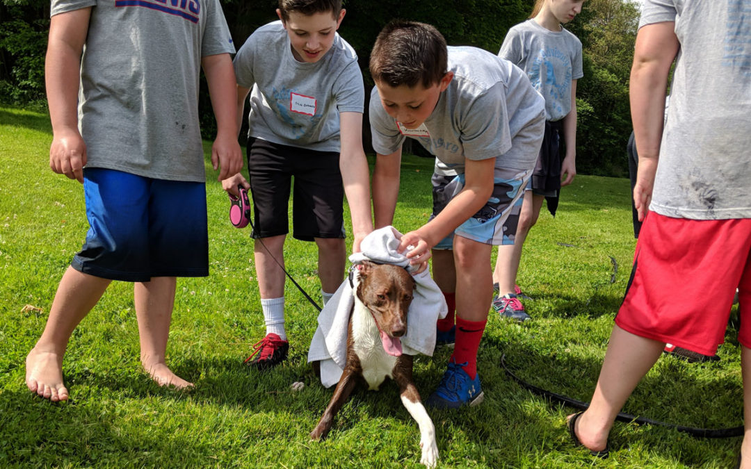 Students Raise Money for Local Animal Shelter