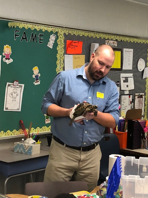 Presenter holds a turtle