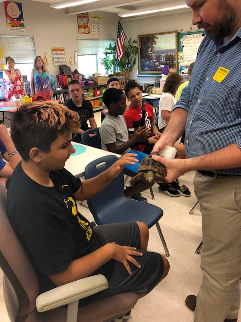 Student pets a turtle