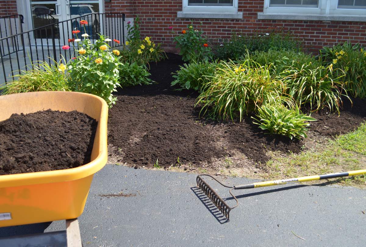 Landscaping at Central Administration