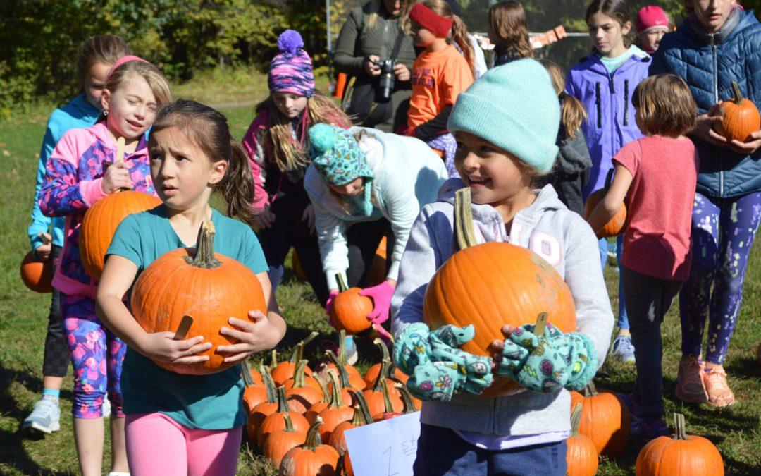 Bell Top Pumpkin Race