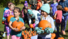 Students receive pumpkins