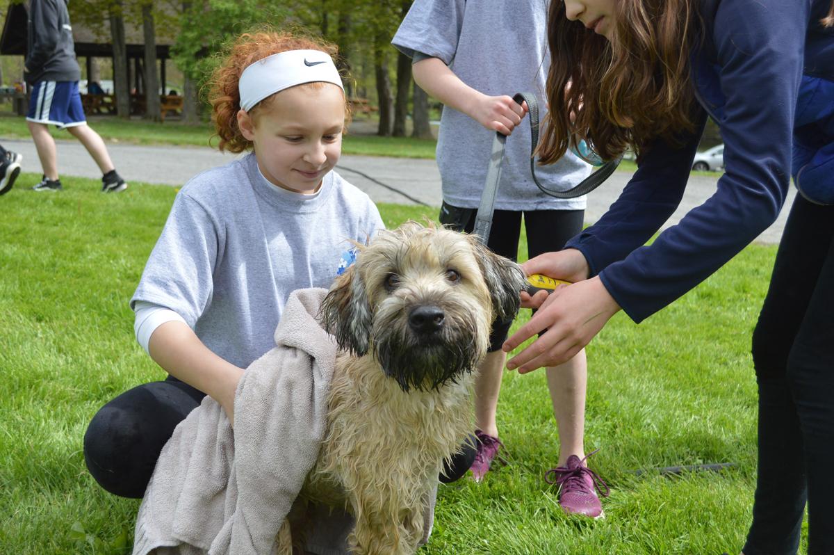 Students wash dog