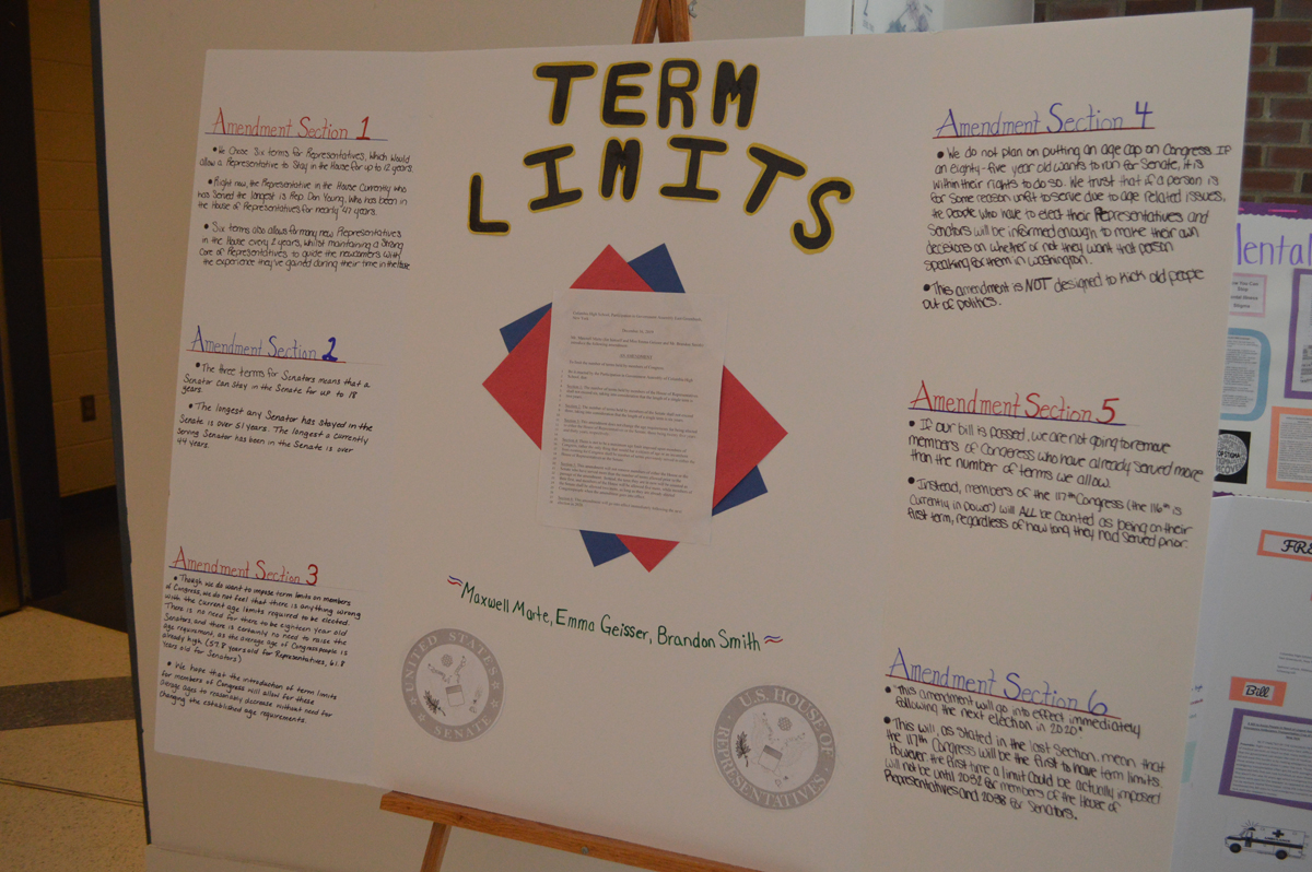 Term Limits poster board