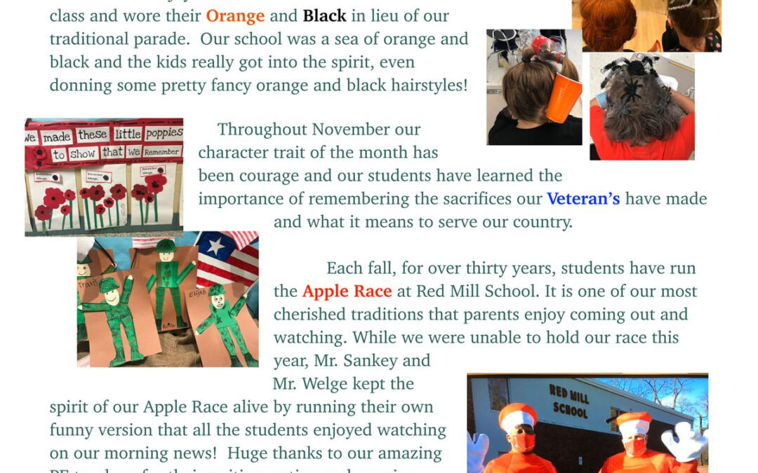 Red Mill Principal's Newsletter – November 2020