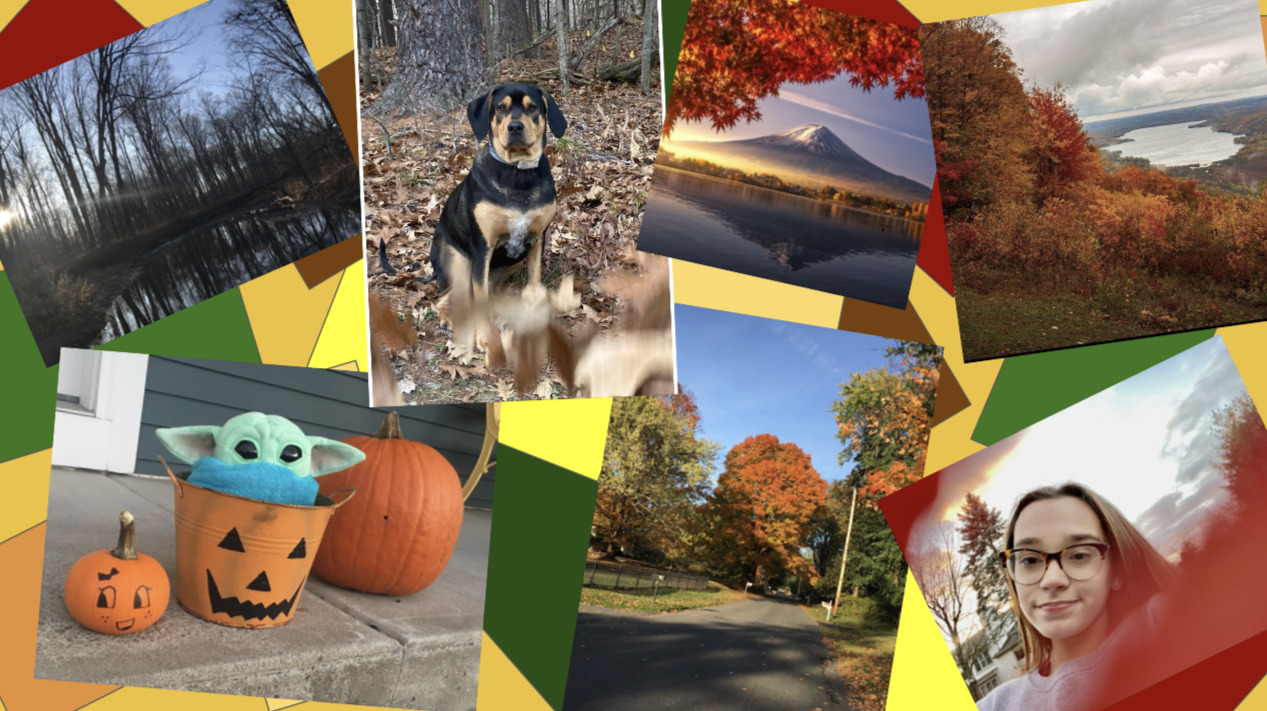 Goff November Photo Challenge