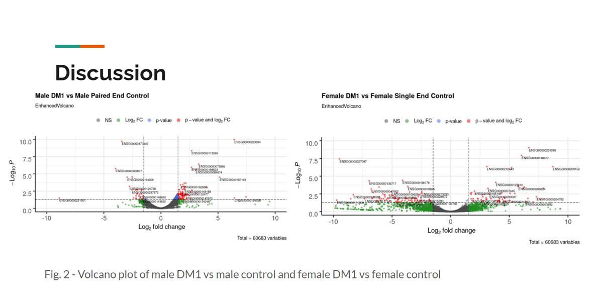 Research presentation slide
