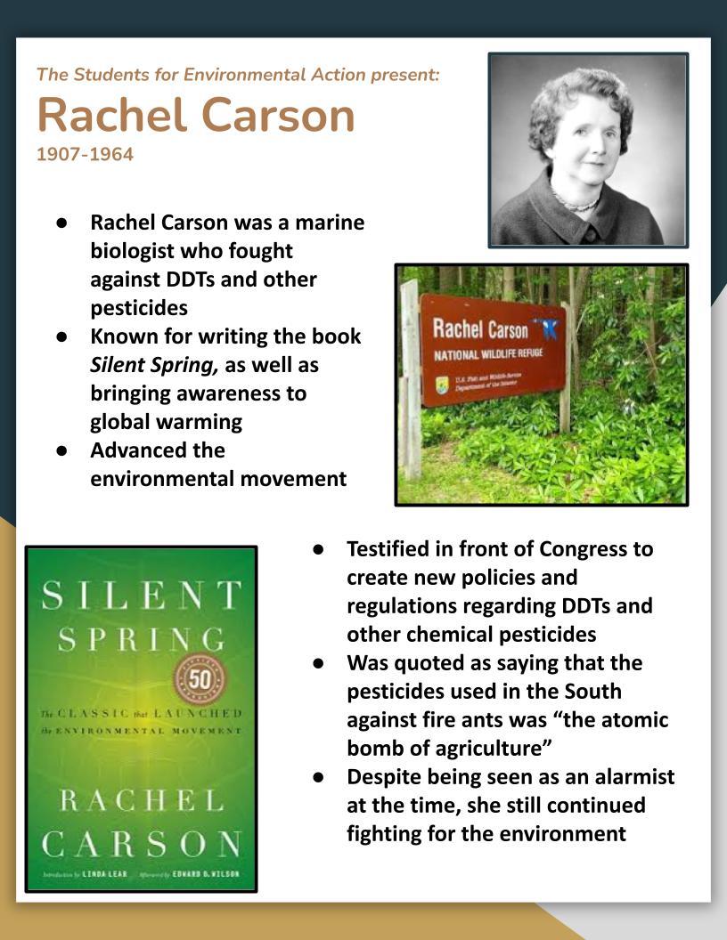 Rachel Carson flyer